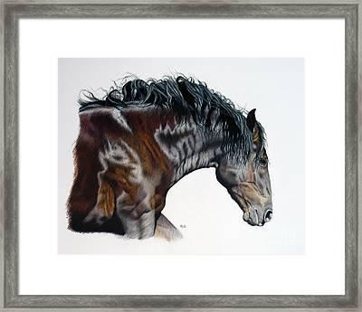 Bellus Equus Framed Print