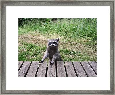 Belly Up To The Bar Framed Print by Kym Backland