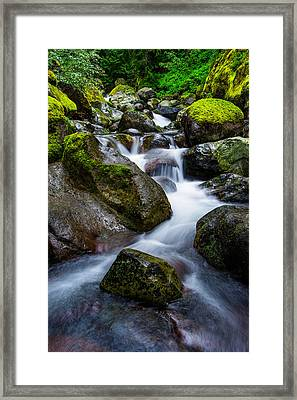 Below Rainier Framed Print