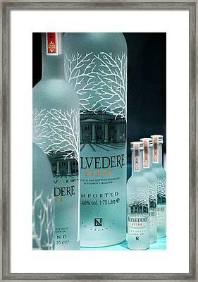 Belvedere Vodka Still Life Framed Print by Ben and Raisa Gertsberg