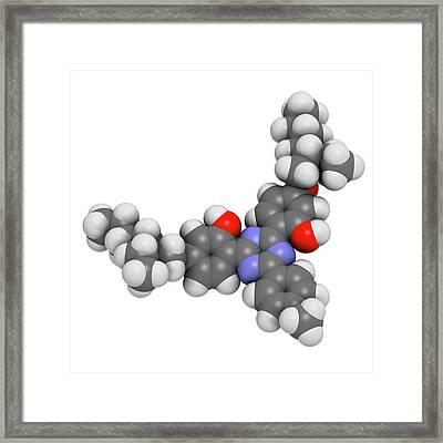 Bemotrizinol Sunscreen Molecule Framed Print by Molekuul