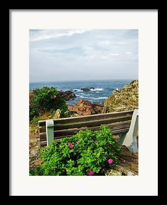 Spring In Maine Framed Prints