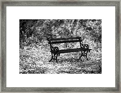 Bench At Charles Town Framed Print by John Rizzuto