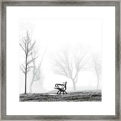 Bench Framed Print by Brian Carson