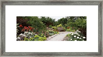 Bench In A Garden, Olbrich Botanical Framed Print by Panoramic Images