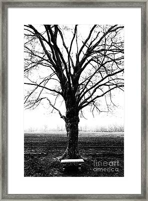 Bench In Cold Winter Framed Print