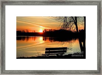 Bench View Framed Print by Thomas Danilovich