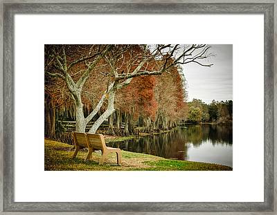 Bench With A View Framed Print by Carolyn Marshall