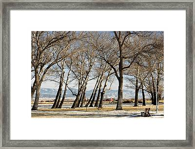Framed Print featuring the photograph Bench With A View by Sue Smith