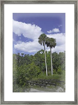 Benched At Rainbow Springs Campground Framed Print by Judy Hall-Folde