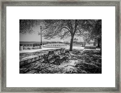Benches Framed Print