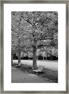 Benches In The Park Framed Print
