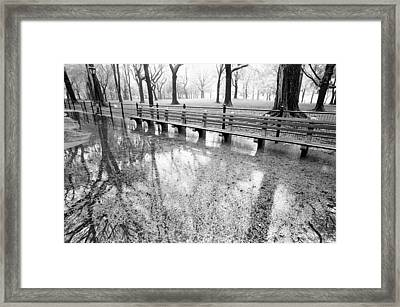 Framed Print featuring the photograph Benches Reflection Poets Walk by Dave Beckerman