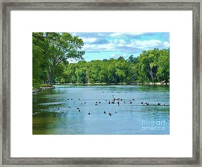 The Bend In The River   Indiana  Summer Framed Print
