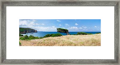 Bended Trees On The Bay, Bay Of Framed Print by Panoramic Images