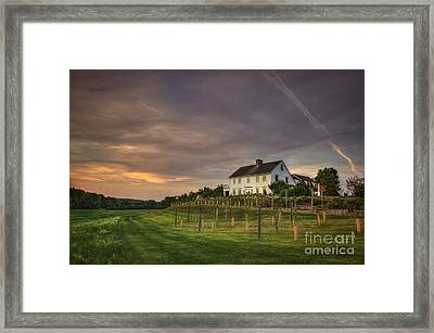 Beneath An Evening Sky Framed Print by Evelina Kremsdorf
