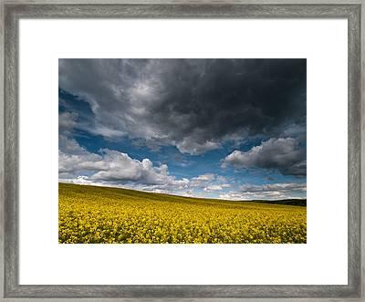 Beneath The Gloomy Sky Framed Print by Davorin Mance