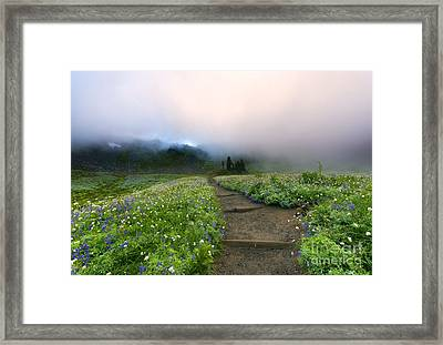Beneath The Heavens Framed Print by Mike Dawson