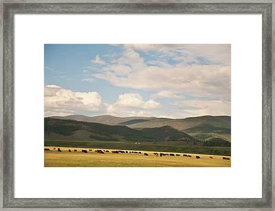 Framed Print featuring the photograph Beneath The Open Sky I Roam by Shirley Heier