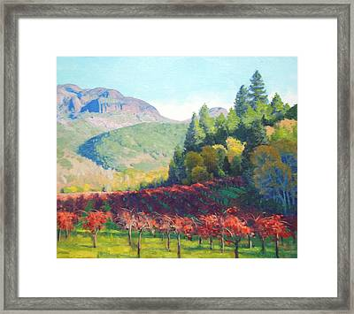 Beneath The Palisades Framed Print