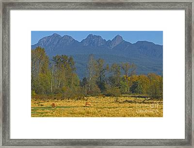 Beneath The Peaks Framed Print by Sharon Talson