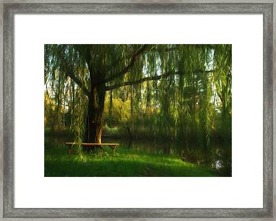Beneath The Willow Framed Print by Lori Deiter
