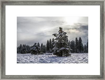 Benevolent Sun Framed Print