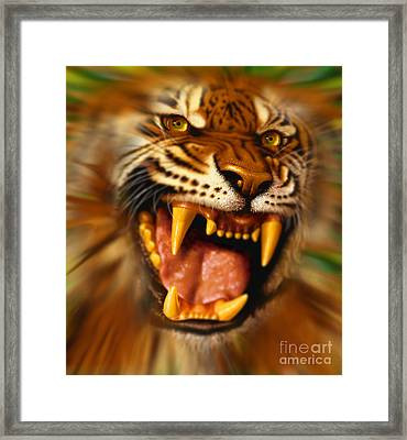 Bengal Framed Print by Jurek Zamoyski