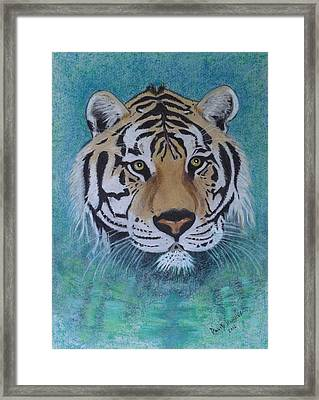 Bengal Tiger In Water Framed Print by David Hawkes