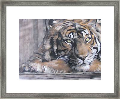 Framed Print featuring the painting Bengal Tiger by Vikram Singh