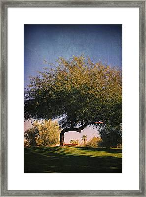 Bent But Not Broken Framed Print by Laurie Search