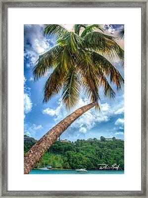 Bent Palm Framed Print by William Reek
