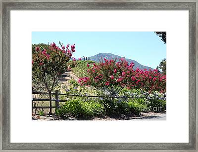 Benziger Winery In The Sonoma California Wine Country 5d24493 Framed Print by Wingsdomain Art and Photography