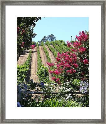 Benziger Winery In The Sonoma California Wine Country 5d24495 Vertical Framed Print by Wingsdomain Art and Photography