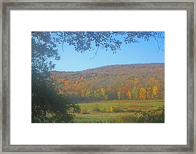 Berkshires Colors  Framed Print