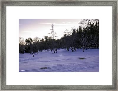 Berkshires Winter 5 - Massachusetts Framed Print by Madeline Ellis