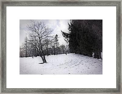 Berkshires Winter 9 - Massachusetts Framed Print by Madeline Ellis
