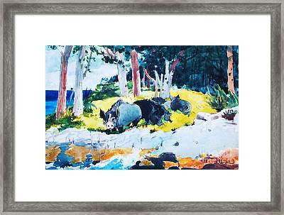 Bermuda  Settlers Framed Print by Pg Reproductions