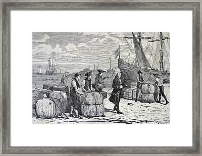 Bernard De Jussieu Framed Print by Universal History Archive/uig