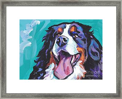 Berner All Smiles Framed Print by Lea S