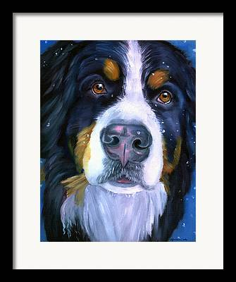 Berner Framed Prints