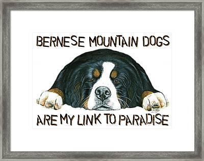 Bernese Mountain Dog Paradise Framed Print