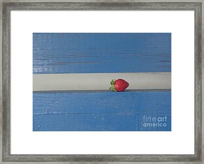Framed Print featuring the photograph Berry Blues by Christina Verdgeline