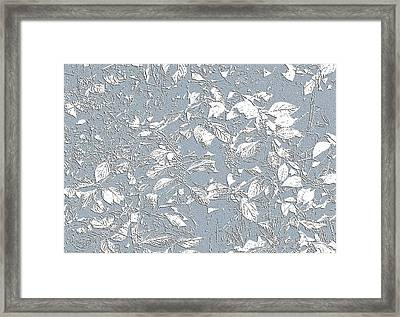 Berry Branch Blue Framed Print
