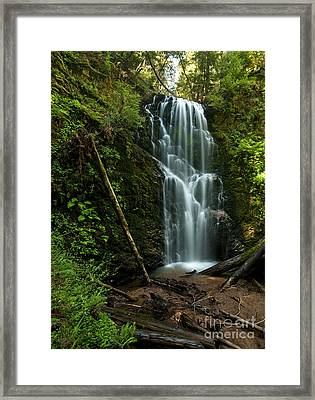 Berry Creek Falls In Big Basin Framed Print by Matt Tilghman