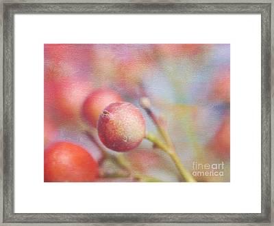 Berry Crowd Framed Print