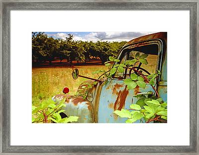Berry Old Truck 2 Framed Print by Jean Noren