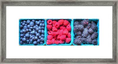 Berry Trio Framed Print by Heidi Smith