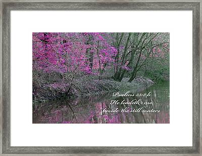 Beside Still Waters Framed Print by Lorna Rogers Photography