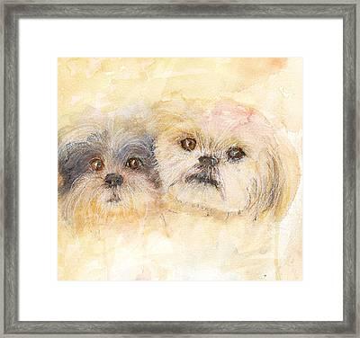 Best Buddies Framed Print by Peggy Bosse